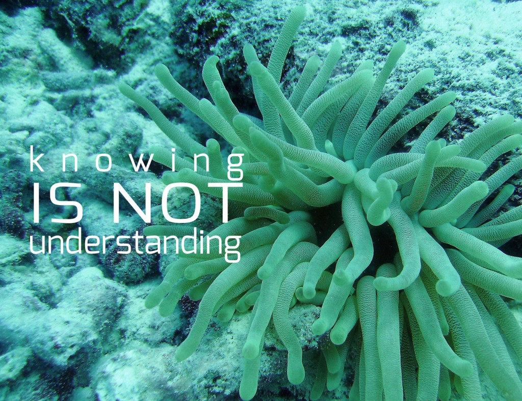 Knowing is NOT Understanding